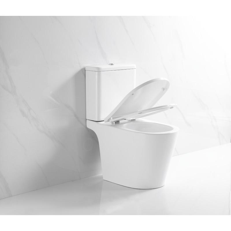 R696 360度超旋沖水 銀離子抗菌塗層 相連式 自由咀座廁 連緩衝降板 (原價HK$3880)